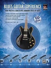 The Blues Guitar Experience