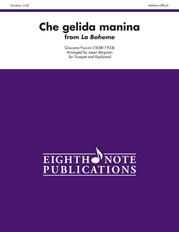 Che gelida manina (from La Boheme)