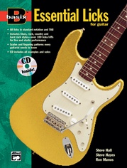 Basix®: Essential Licks for Guitar