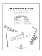 The Wind Beneath My Wings