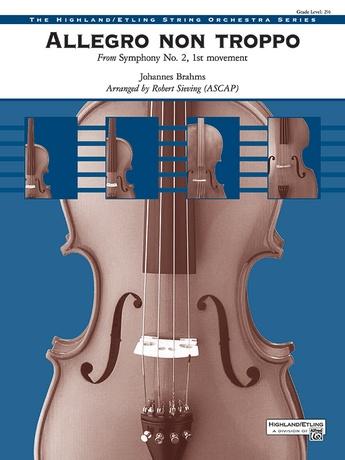 Allegro non troppo - String Orchestra